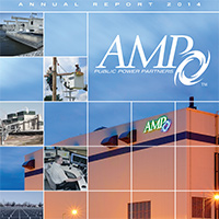 2014-amp-annual-report-thumb