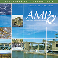 AMP-2014-Sustainability-Report